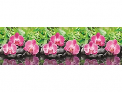 Фартук кухонный № 434 Орхидеи